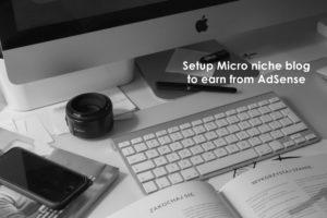 Setup a micro niche blog